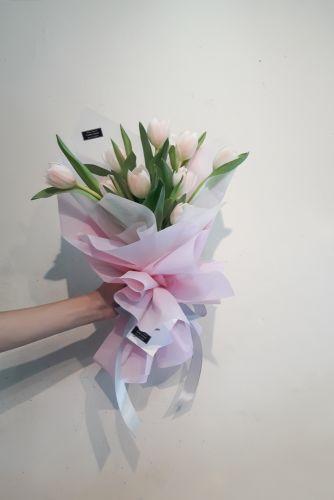 tierno tulipán