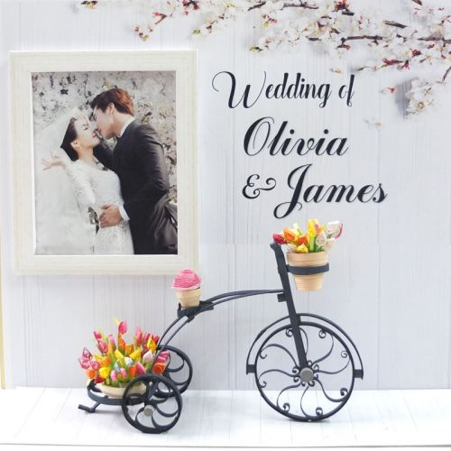 Special Gift -  Wedding Love Bicycle