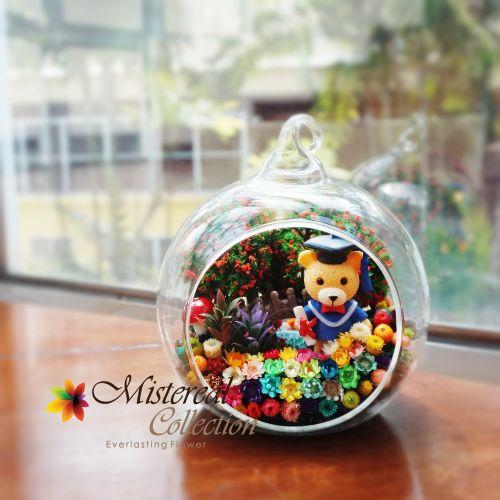 Graduation Bear - Mistereal Preserved Flowers