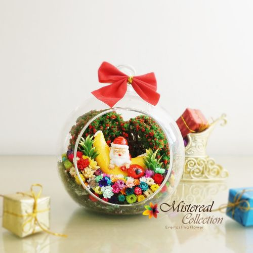Christmas Santa with Moon - Mistereal Preserved Flowers