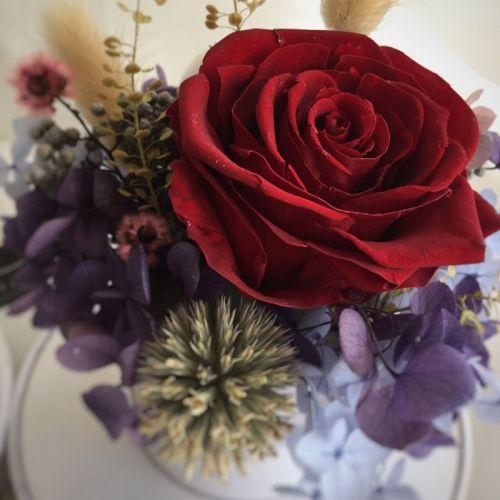 Valentine 2020 - LVFB 003 Everlasting Blooms