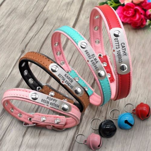 Personalized Padded Leather Pet Collars