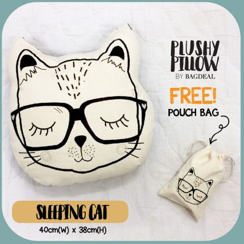 Sleeping Cat Plushy Pillow