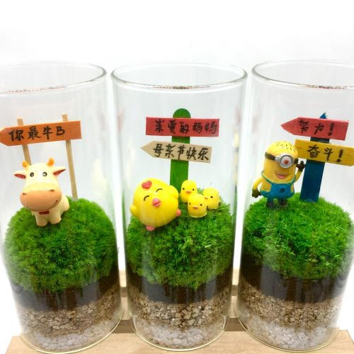 Preserved Moss ECOTUBE (XL) [永生苔藓植物] with personalised message & figurine